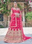 Wonderful Pink Net Embroidery Work Lehenga Choli