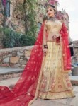 Heavenly Beige Net Embroidery Work Lehenga Choli
