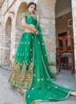 Resplendent Green Net Embroidery Work Lehenga Choli