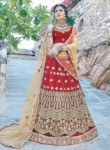 Sunshine Red Net Embroidery Work Lehenga Choli